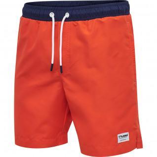 Pantalones cortos de baño Hummel hmljordan board