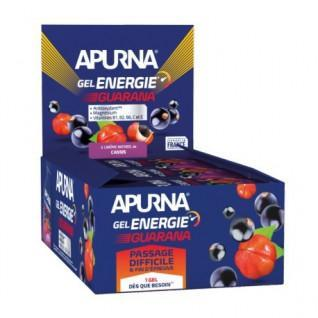 Lote de 24 geles Apurna Energy guaraná grosella negra - 35g